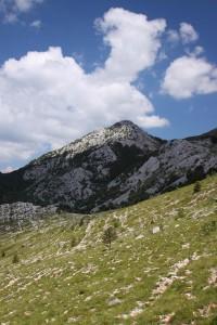 Sveto-brdo7274