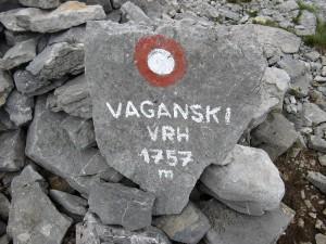 Vaganski1930