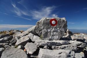 Vaganski3123